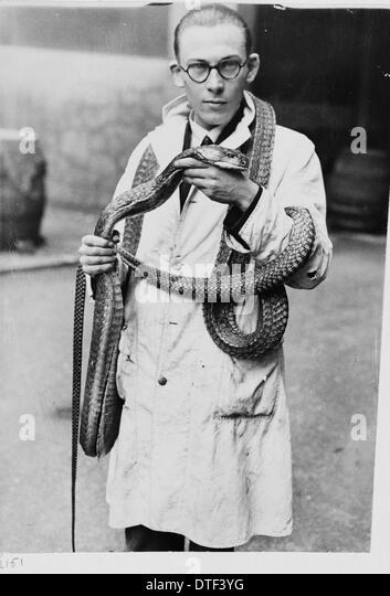 Man wearing snake, 1930s - Stock Image