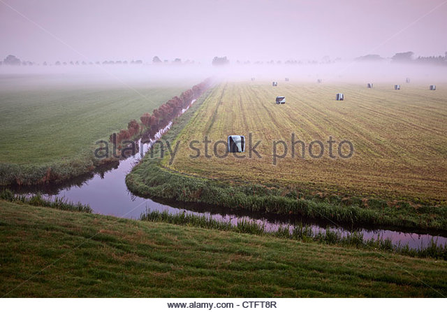 The Netherlands, Zuid Beemster, Beemster Polder, UNESCO World Heritage site. Hay packed in plastic. - Stock Image