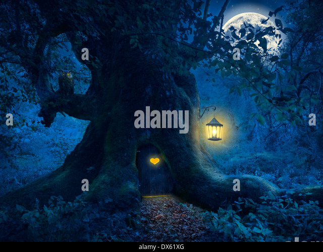 Magical night with a little home in the trunk of an ancient tree in the enchanted forest. - Stock-Bilder