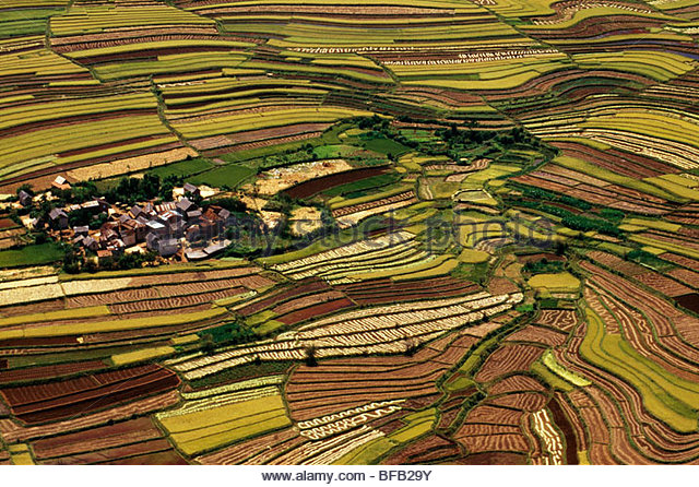 Sustainable agriculture (aerial), Betsileo terrace fields, Central Madagascar - Stock Image