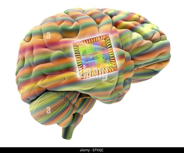 Artificial intelligence and cybernetics, conceptual image. This image of a computer chip, superimposed on a human - Stock Image
