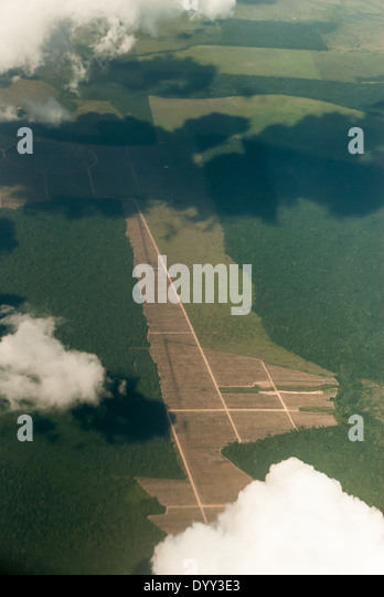 Para State, Brazil. Deforestation. Aerial view of new road with neatly laid out geometric field boundaries. - Stock Image