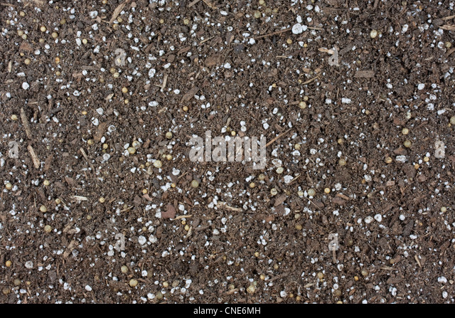 Humus soil stock photos humus soil stock images alamy for Garden soil or potting soil
