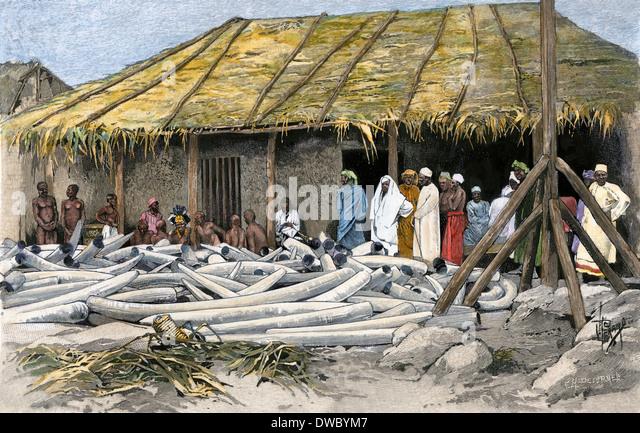 Ivory displayed at Tippu Tib's camp on the Congo, 1880s. - Stock-Bilder