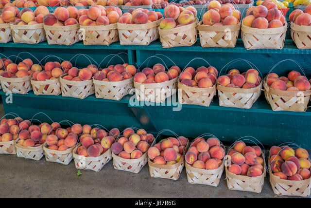 Shelves full of boxes of ripe, fresh picked peaches at a roadside market in Alabama, USA. - Stock Image