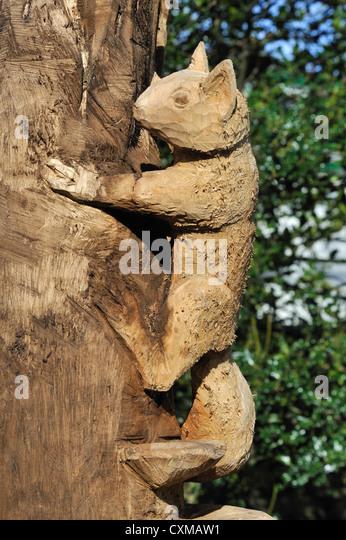 Squirrel carving stock photos