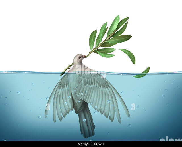 Diplomatic crisis concept as a peace dove drowning in water trying to hold on to an olive branch as an urgency symbol - Stock-Bilder