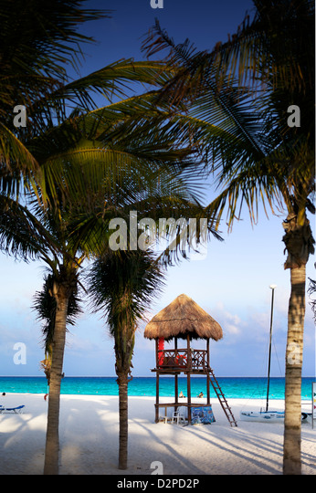 Hut on the beach amongst palm trees - Stock Image
