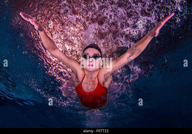 Young woman swimming underwater - Stock-Bilder