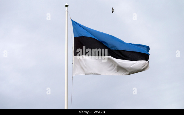 Estonian flag - Stock Image