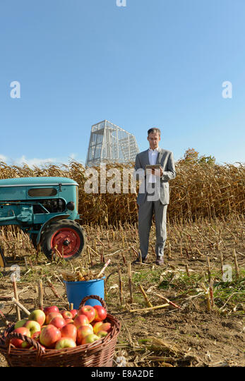 Businessman with digital tablet in cornfield, geothermal power station in background, Bavaria, Germany - Stock Image