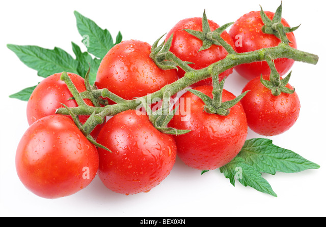 Tomatoes, object on a white background - Stock Image