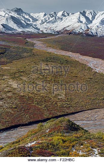 Polychrome Pass in Denali national park - Alaska - Stock Image