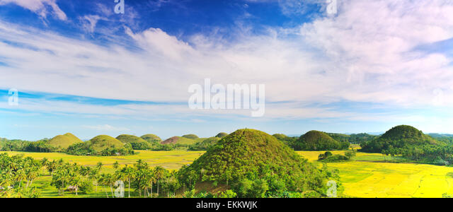 View of The Chocolate Hills. Bohol, Philippines - Stock Image