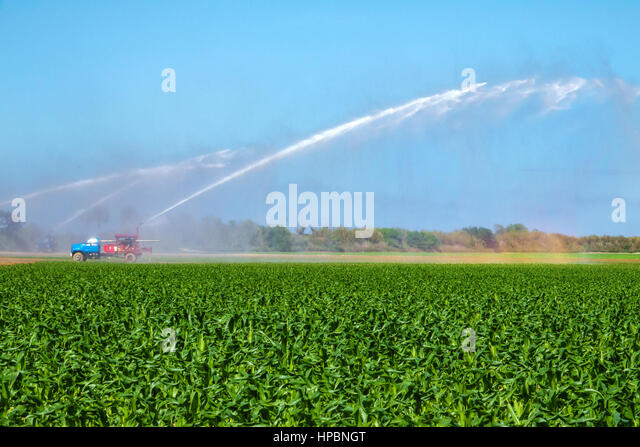 Homestead Florida Redland agriculture field irrigation system watering corn crop truck pump - Stock Image