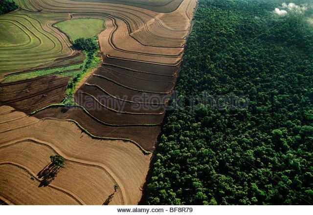 Industrial farmland surrounding cerrado habitat, Emas National Park, Brazil - Stock Image