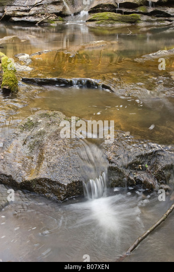 reflection in a stream - Stock Image