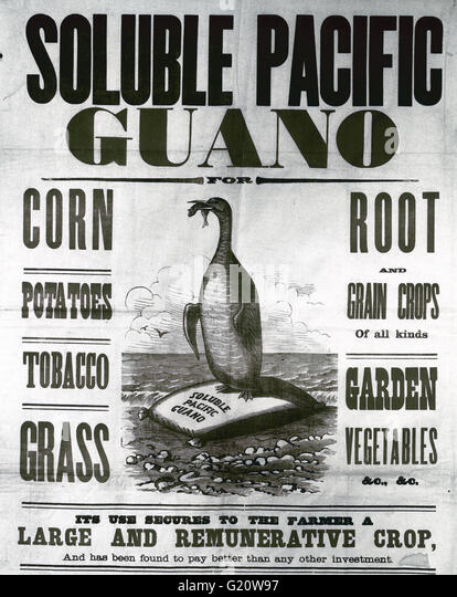 advertisement-from-usa-for-guano-from-ch