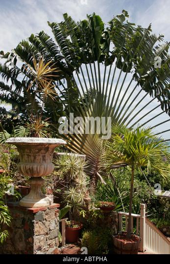 St. Thomas USVI Charlotte Amalie Blackbeard's Hill 99 Steps - Stock Image