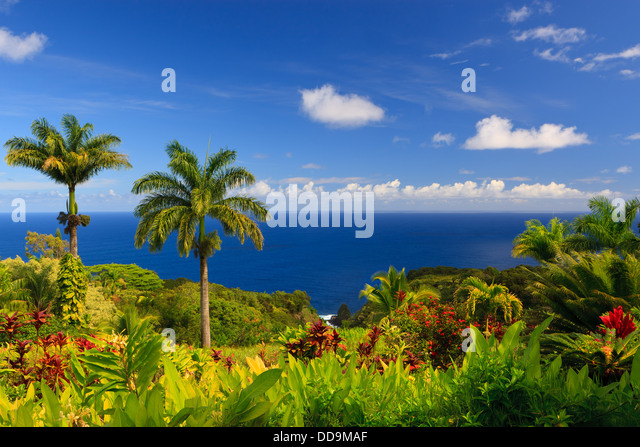 Ocean view from the Garden of Eden, Maui, Hawaii - Stock Image