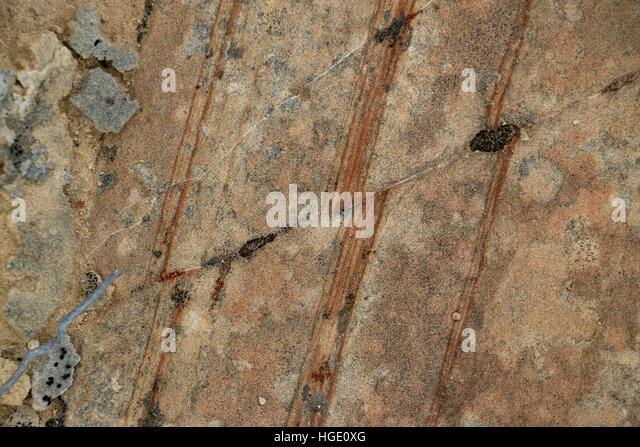 tilted rock layer fault line Dinosaur National Monument Utah - Stock Image