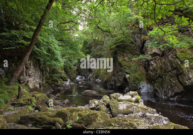 The scenic Fairy Glen at Bettws y Coed north Wales with moss covered stones in foreground - Stock Image