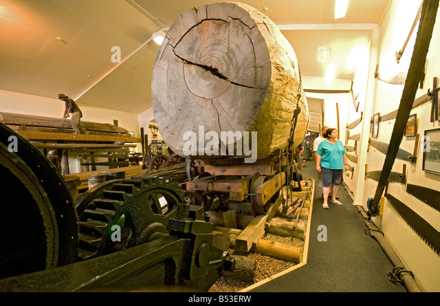 A Kauri log on a rail truck, Matakohe Kauri Museum, North Island, New Zealand - Stock Image