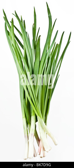 Green onions bunch on a white background - Stock Image