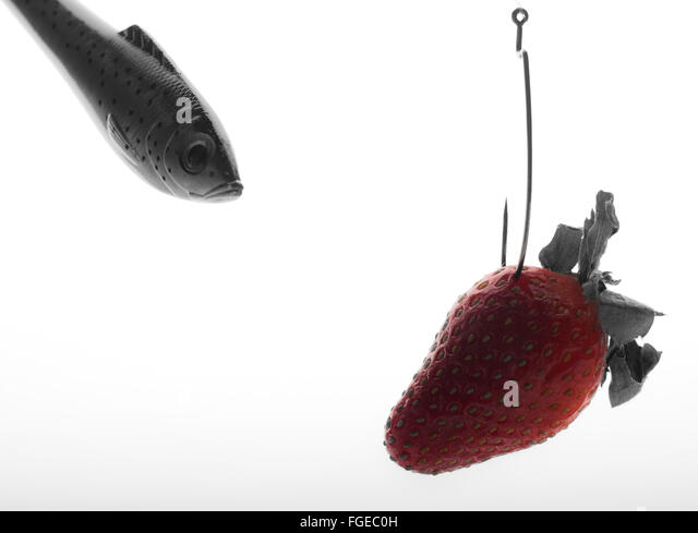 Fish Hook Strawberry Suspicious Hesitation Doubt - Stock Image