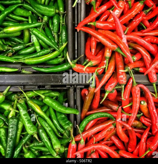 Green and red chillies - Stock Image