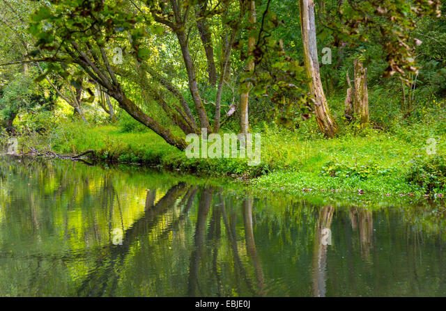 Reflections in lake old mill pond, Water-cum-Jolly, with trees, tranquil, peaceful, horizontal format - Stock Image