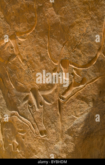 Rock carving, Crying Cow, Algeria, Africa - Stock Image