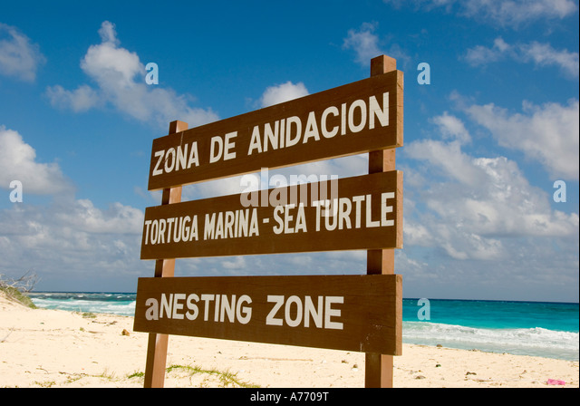 Mexico Cozumel Punta Sur parque ecological park reserve sign sea turtle beach nesting zone blue green water mayan - Stock Image