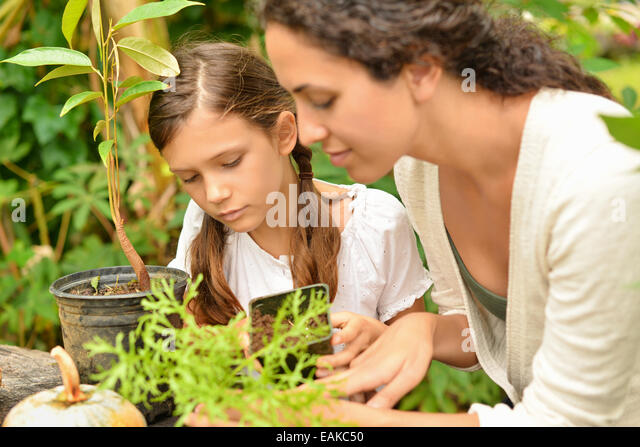 Woman and girl potting plants in garden - Stock Image