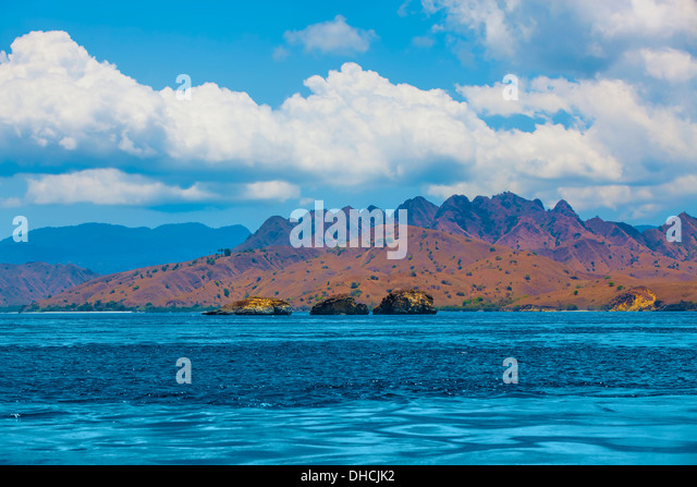 Komodo Island - Stock Image