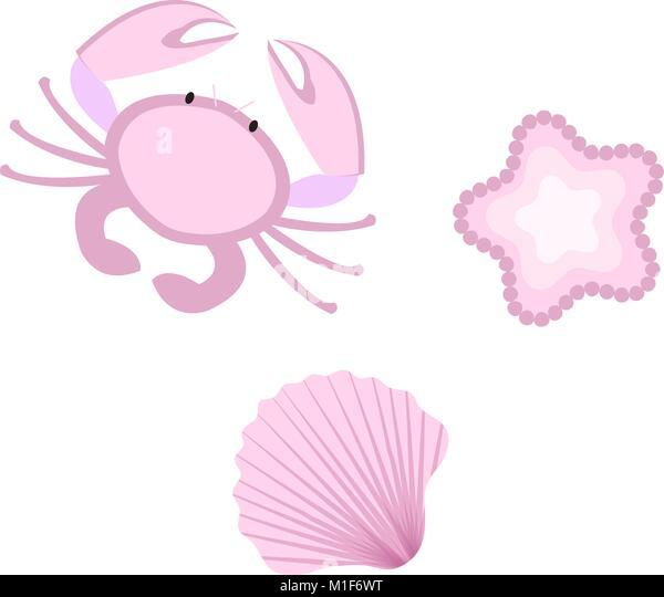Cute Seashell Cartoon Design Stock Photos & Cute Seashell ...