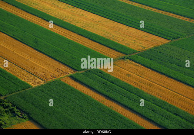 Aerial View, Farm Land, Croatia, Slavonia, Europe - Stock Image