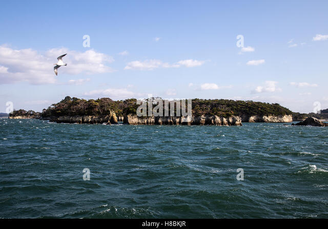 Matsushima Bay has over 260 tiny islands and considered to be one of Japan's Three Great Sights - Nihon Sankei. - Stock-Bilder