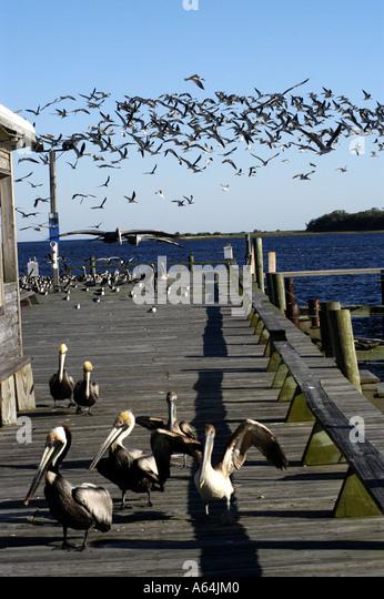 Cedar Key Florida Dock Street - Stock Image