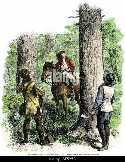 Royal surveyors marking trees with arrows in West Virginia 1600s - Stock Image