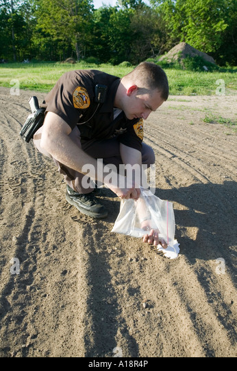 Deputy sheriff pouring plaster mix into a shoe print at a crime scene - Stock Image