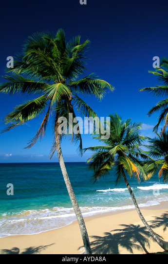 Dominican Republic beach above Playa Grande on the north coast - Stock Image