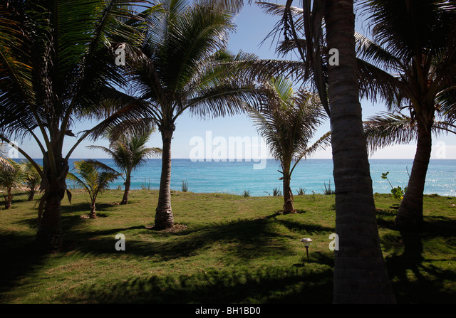Landscaped grounds, palm trees, Caribbean Sea, Dominican Republic - Stock-Bilder