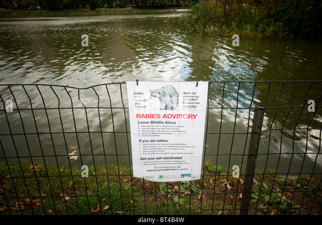 A sign warning visitors to the Harlem Meer in Central Park in New York about the danger of rabies - Stock Image