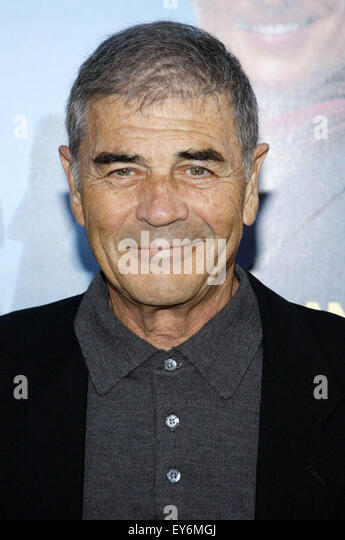 David Forster at the Los Angeles premiere of 'Ghosts Of Girlfriends Past' held at the Grauman's Chinese - Stock Image