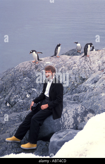 ANTARCTICA Man Dressed in tuxedo surrounded by penguins colored like a penguin - Stock Image