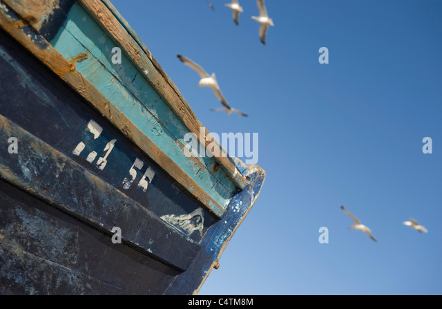 Gulls flying over worn fishing boat, cropped - Stock Image