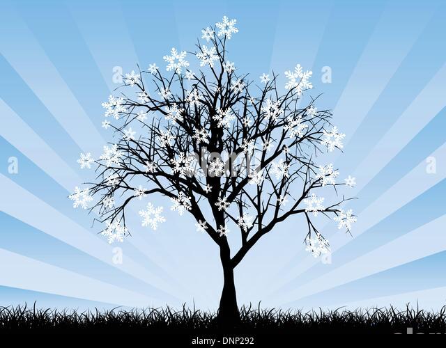 Snowflake background - Stock Image