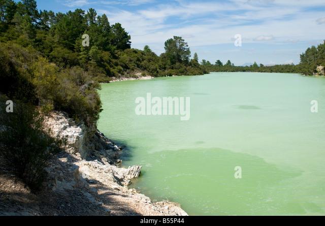 Lake Ngakoro at the Wai-O-Tapu thermal area, near Rotorua, North Island, New Zealand - Stock Image