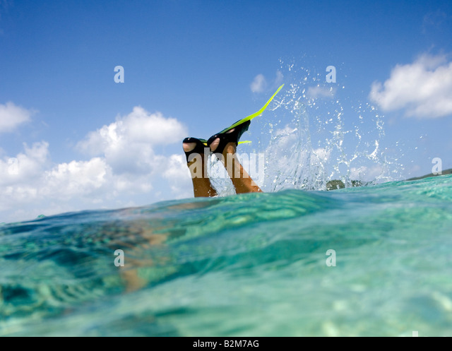 A man snorkeling in clear shallow Caribbean water All we see are the fins and his lower legs sticking up out of - Stock Image